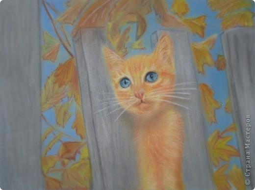 Щенок и рыжий котёнок) фото 2