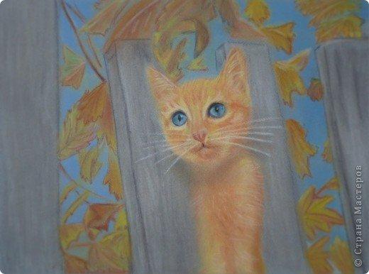 Щенок и рыжий котёнок) фото 4
