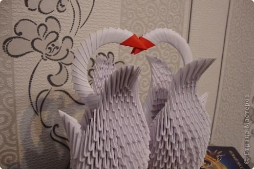 Два Лебедя) фото 1