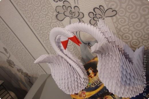Два Лебедя) фото 2
