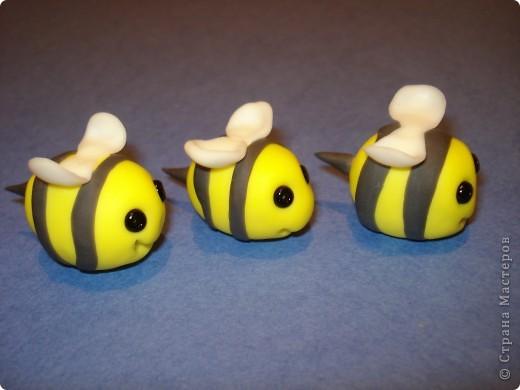 вот такие пчелки налепились фото 2