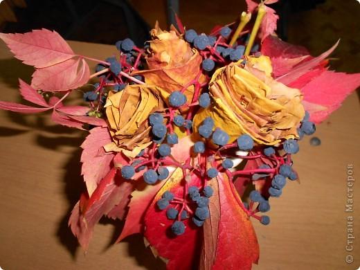 осенний букет из кленовых листьев и дикого винограда