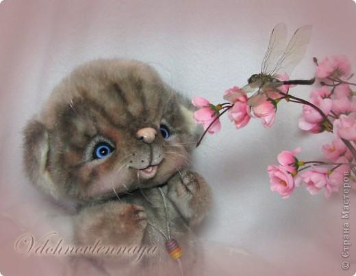 Любят кошкии коты Нюхать летние цветы: Можно капелькой росы Освежить свои усы)) фото 1