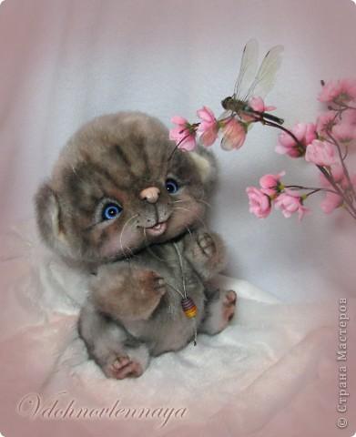 Любят кошкии коты Нюхать летние цветы: Можно капелькой росы Освежить свои усы)) фото 3