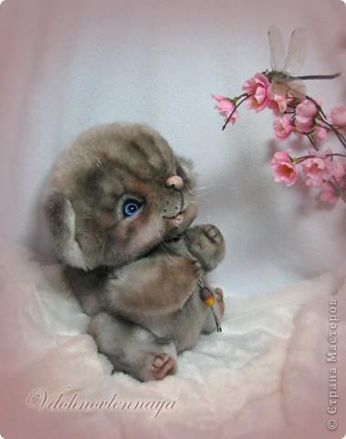 Любят кошкии коты Нюхать летние цветы: Можно капелькой росы Освежить свои усы)) фото 4