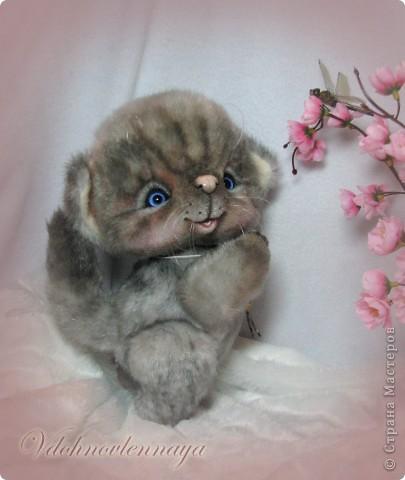 Любят кошкии коты Нюхать летние цветы: Можно капелькой росы Освежить свои усы)) фото 7