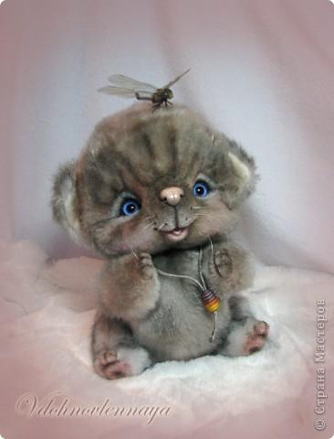 Любят кошкии коты Нюхать летние цветы: Можно капелькой росы Освежить свои усы)) фото 9