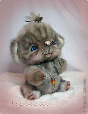 Любят кошкии коты Нюхать летние цветы: Можно капелькой росы Освежить свои усы)) фото 10