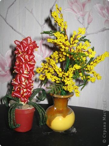 Цветы на восьмое марта, лучший подарок. Такие цветы я сделала в подарок своим подругам. фото 1