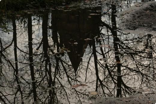 200 лет Царскосельскому лицею. Прогулка по Александровскому парку и окрестностям.. фото 16