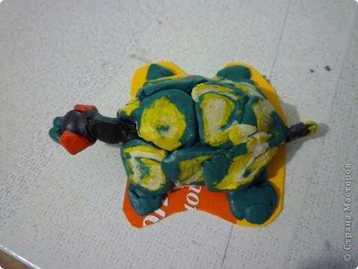Эту черепашку я слепил вчера на уроке технологии фото 2