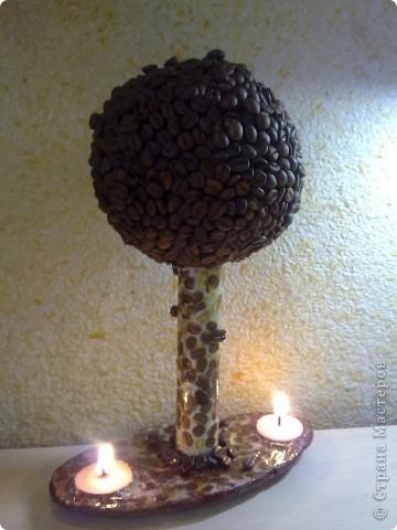 Кофейное дерево-две свечи.  фото 1
