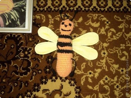 Пчелка Даша фото 2