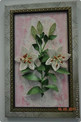 Лилии. Спасибо Мастерицам за идею цветов.  фото 2