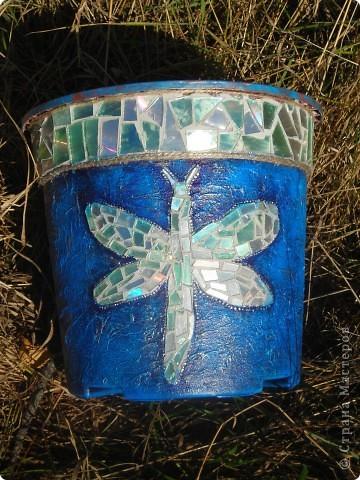 горшок с бабочкой и стрекозой фото 2