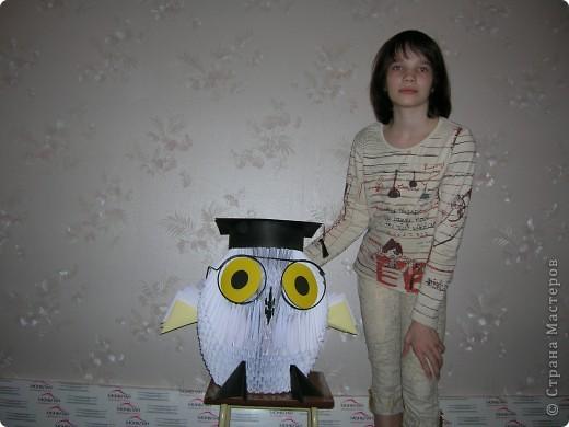 модульное Большая сова
