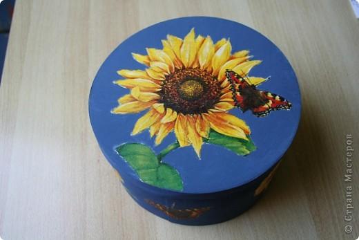 Комнатный цветок фото 6