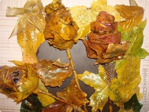 Композиция из листиков,веточек,ягодок и коры фото 3