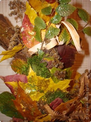 Композиция из листиков,веточек,ягодок и коры фото 6