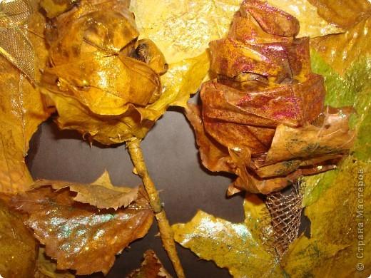 Композиция из листиков,веточек,ягодок и коры фото 4