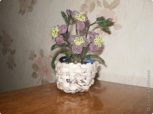 Новый горшок для старого цветка