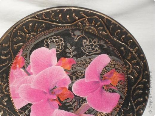 Опять любимые орхидеи. фото 6