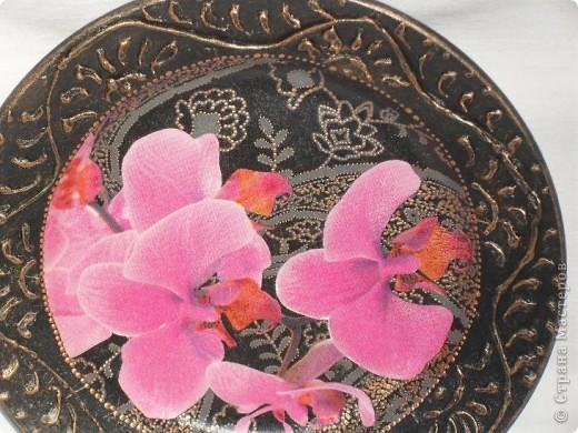 Опять любимые орхидеи. фото 8