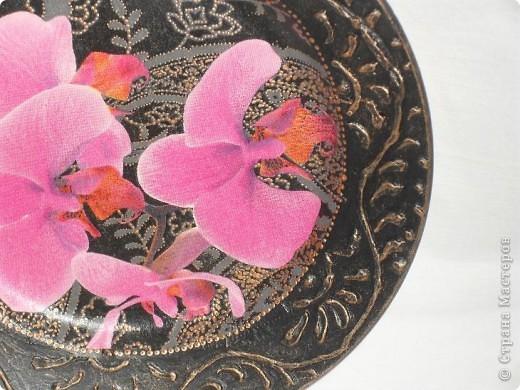 Опять любимые орхидеи. фото 10