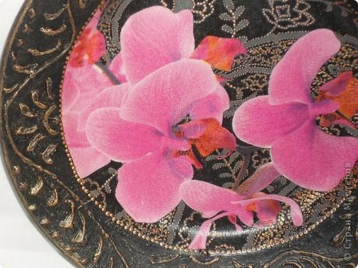 Опять любимые орхидеи. фото 12