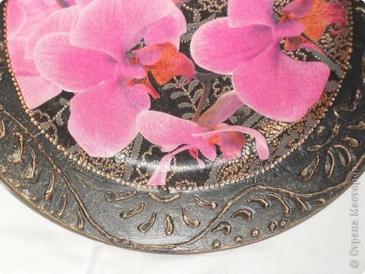 Опять любимые орхидеи. фото 13