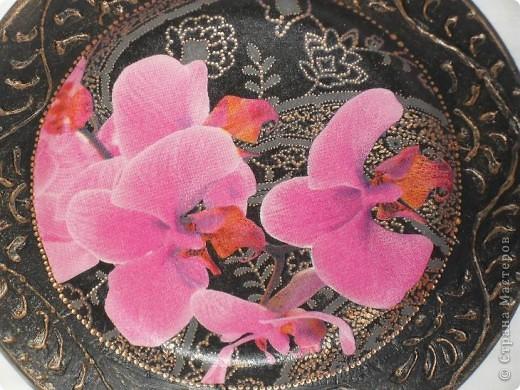 Опять любимые орхидеи. фото 5