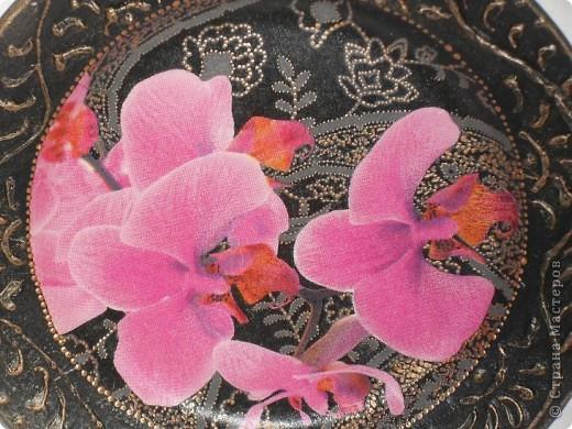 Опять любимые орхидеи. фото 4