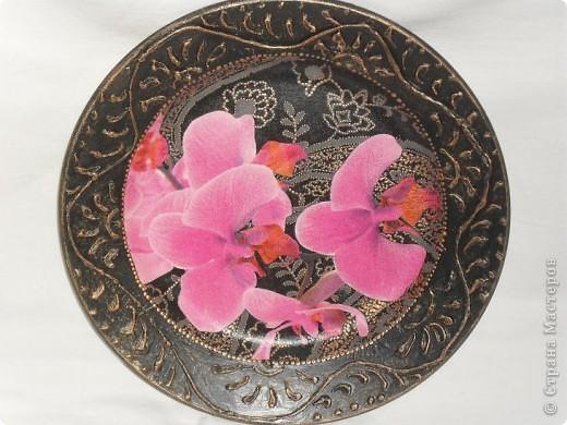 Опять любимые орхидеи. фото 1