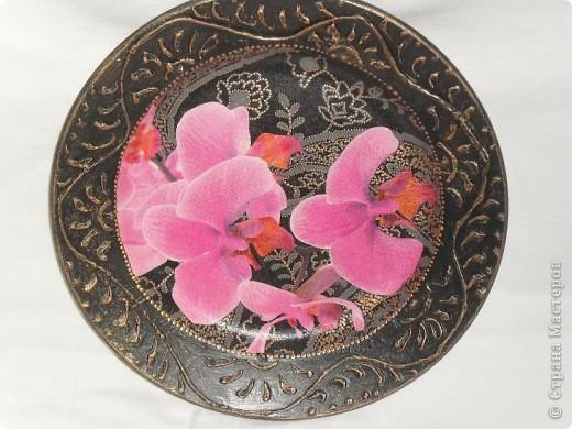 Опять любимые орхидеи. фото 14