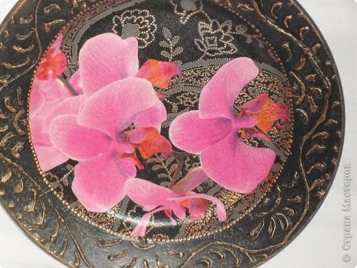 Опять любимые орхидеи. фото 3