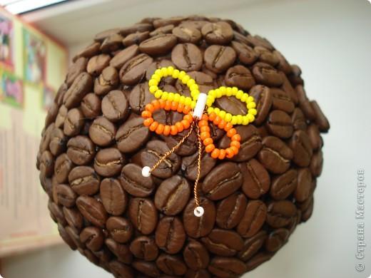1.Кофейное деревце с собачкой! фото 2