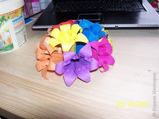 Лилия шести лепестковая фото 4