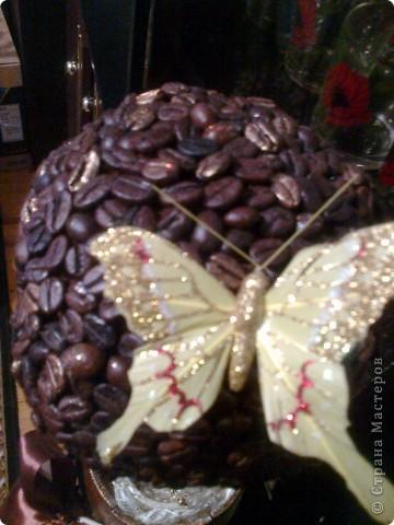 Магнітики і кавове дерево фото 5