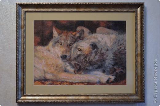 Купить вышивку крестом пара волков