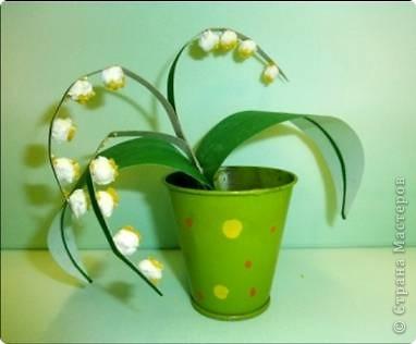 Ландыш  Беленькие горошки на зелёной ножке. В мае зацветают, на весь лес благоухают.  фото 2