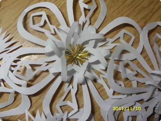 А это снежиночки...Меня Ирина Юрьевна(школьный учитель дочери) попросила вырезать листья осенние для оформления стенда...я их так долго несла...снег выпал :-)...решила снежинки начать вырезать по-раньше, а то что-то у меня не хватает времени ни на что.... фото 3