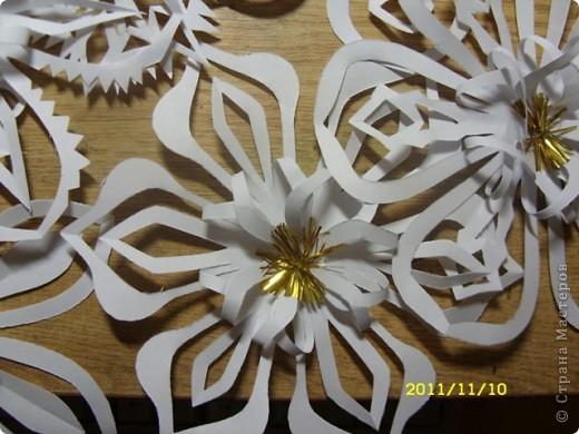 А это снежиночки...Меня Ирина Юрьевна(школьный учитель дочери) попросила вырезать листья осенние для оформления стенда...я их так долго несла...снег выпал :-)...решила снежинки начать вырезать по-раньше, а то что-то у меня не хватает времени ни на что.... фото 4