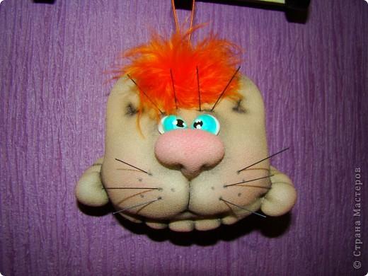 Предлагаю всем желающим сделать вот такого кота шарика. фото 1