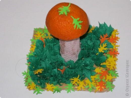 Здравствуйте, дорогие Мастера!Хочу рассказать, как мы с внучкой занимались творчеством. Был тут материал о том как делать грибы, а в комментариях Олеся  https://stranamasterov.ru/user/22863 рассказала, что у них в саду делали грибочки с небольших апельсинов, ну как же не попробовать! фото 1