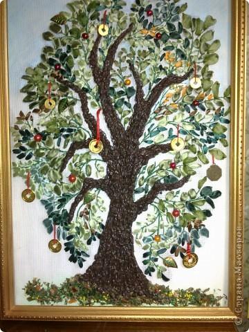 Это денежное дерево.