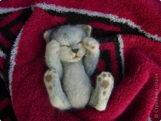 В тяжких муках родился вот такой малыш фото 3