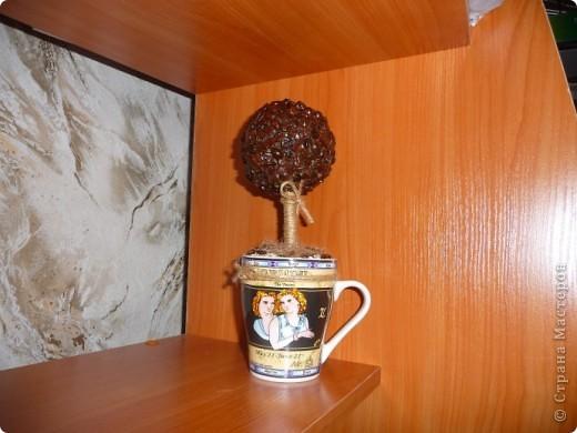 Мое первое кофейное и надеюсь не последнее....