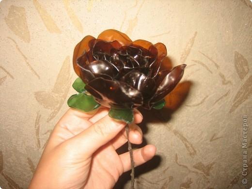 Цветы из бутылок фото 6