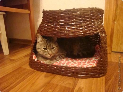 домик для кота из газетных трубочек фото 1