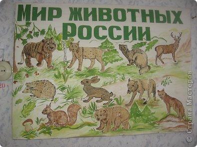 Мир животных России (из листьев кукурузы)